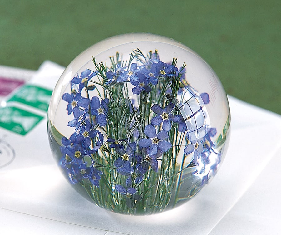 forget me not paperweight 33 reviews 4 85 stars acorn xa1476