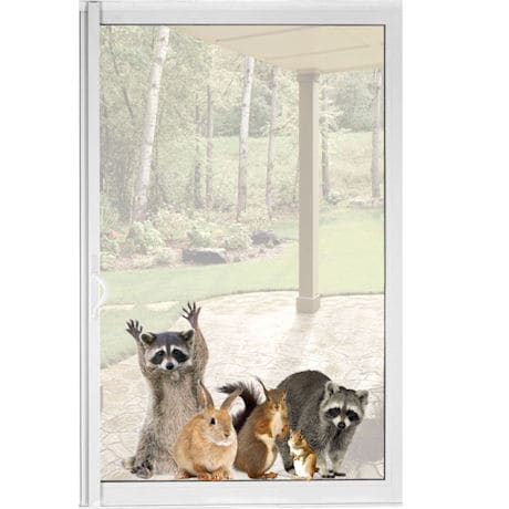Raccoon and Friends Window Cling