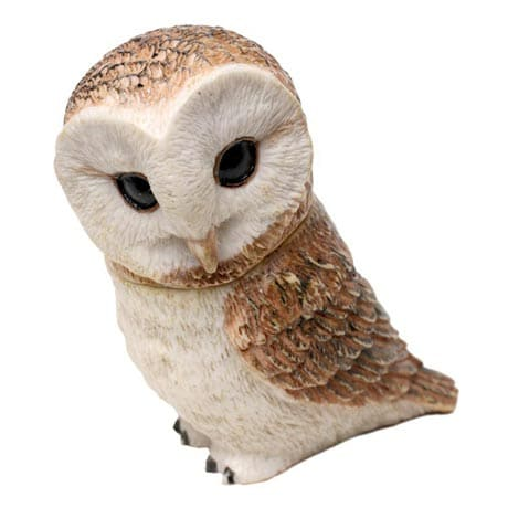 Owl Pot Bellys® Boxes - Barn Owl