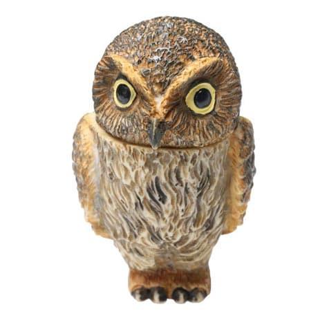 Owl Pot Bellys® Boxes - Elf Owl