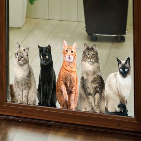 Cat House Window/Door Clings: All Sitting
