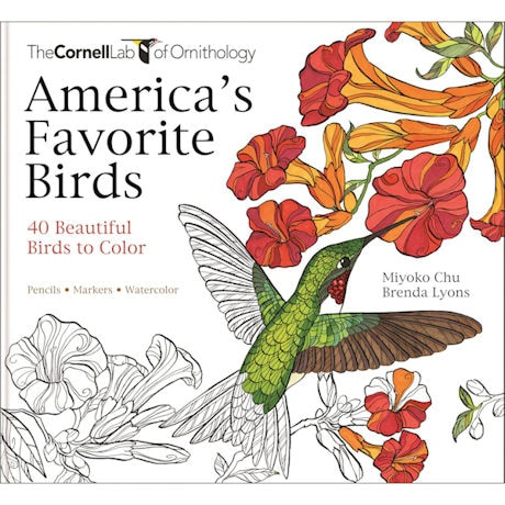 America's Favorite Birds: 40 Beautiful Birds to Color