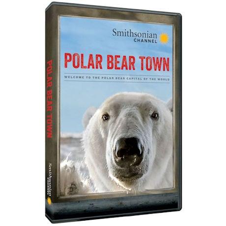 Polar Bear Town: Season 1 DVD