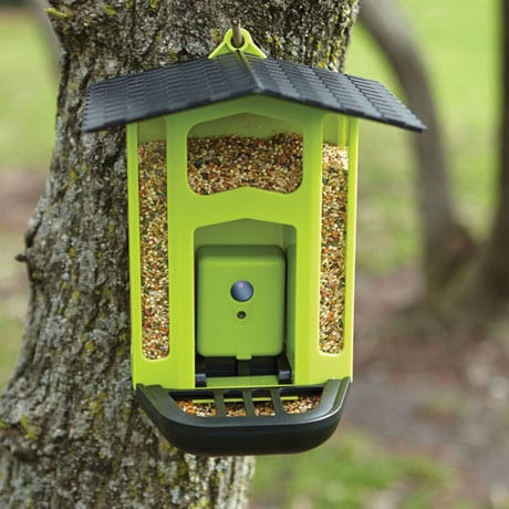 Bird Feeder with 1.5MP Motion Activated Camera