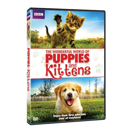 The Wonderful World of Puppies and Kittens DVD