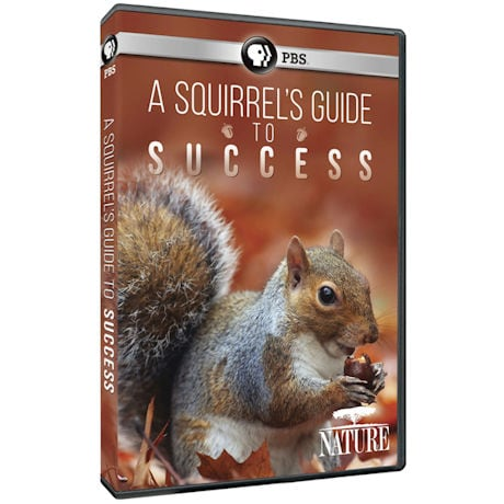 A Squirrel's Guide to Success DVD