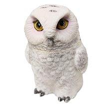 Owl Pot Bellys® Boxes - Snowy Owl