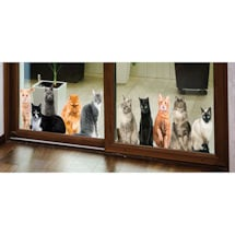 Cat House Window/Door Clings: All Sitting