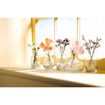 Petite Glass Vases Set: Clear Glass Set