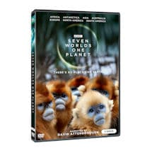 Seven Worlds, One Planet DVD & Blu-ray
